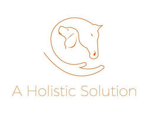aholisticsolution-logo