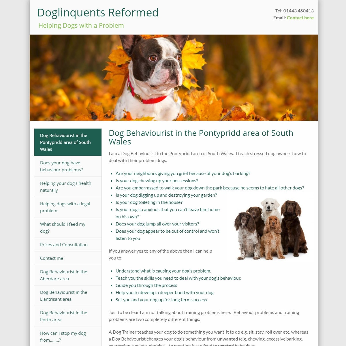 doglinquents