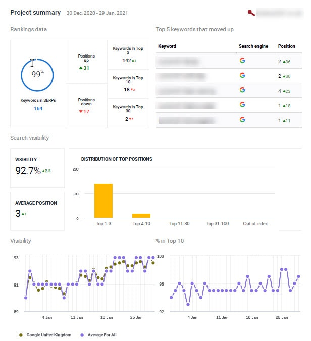 Monthly SEO Report